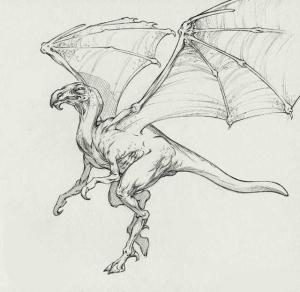Dragon Condor